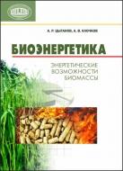 Биоэнергетика: энергетические возможности биомассы